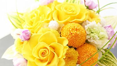 開花コース用イメージ